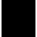 Logo Aaa Mini