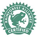 Logo Rainforest Mini
