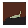Logo Cupofexcel Mini
